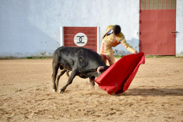 Carlos Domínguez en las horas previas al debut con picadores