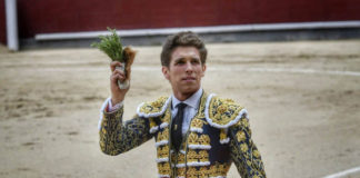 El de Olivenza paseando la oreja del primer Montalvo (FOTO: Plaza1)